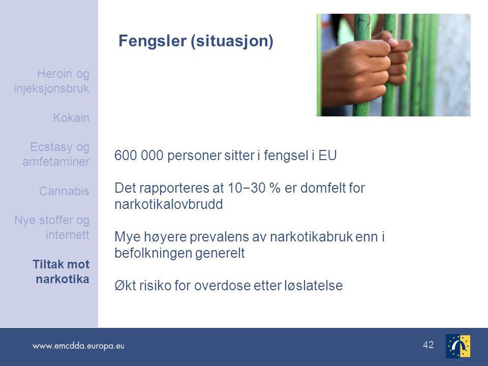 42 Fengsler (situasjon) 600 000 personer sitter i fengsel i EU Det rapporteres at 10−30 % er domfelt for narkotikalovbrudd Mye høyere prevalens av nar