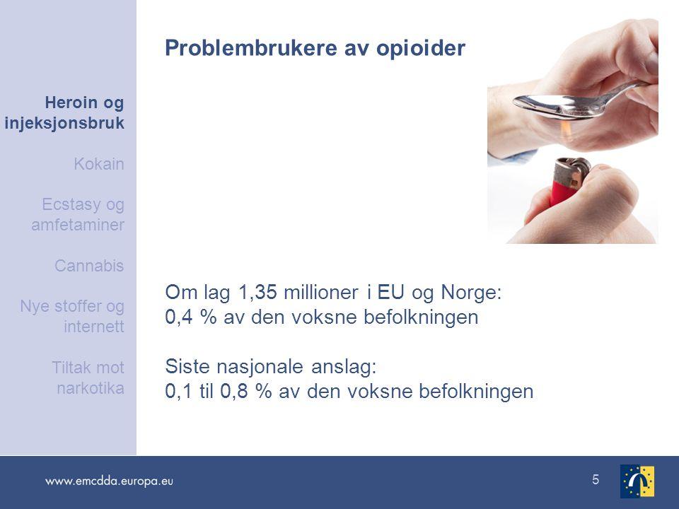 5 Om lag 1,35 millioner i EU og Norge: 0,4 % av den voksne befolkningen Siste nasjonale anslag: 0,1 til 0,8 % av den voksne befolkningen Problembruker