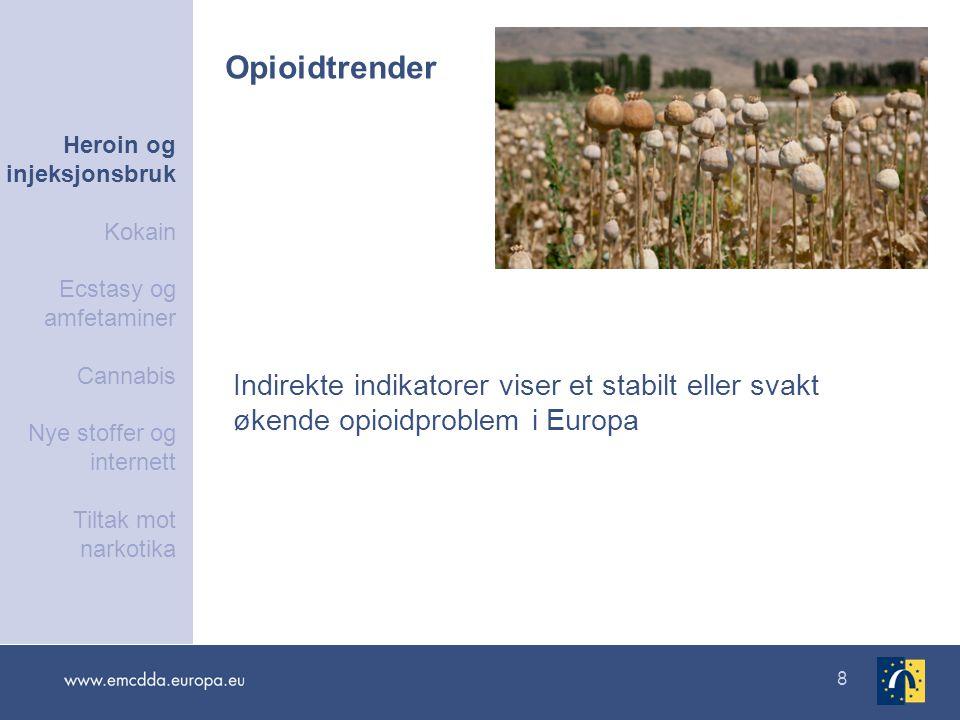 8 Indirekte indikatorer viser et stabilt eller svakt økende opioidproblem i Europa Opioidtrender Heroin og injeksjonsbruk Kokain Ecstasy og amfetamine