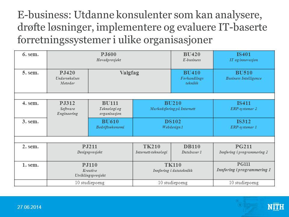 E-business: Utdanne konsulenter som kan analysere, drøfte løsninger, implementere og evaluere IT-baserte forretningssystemer i ulike organisasjoner 6.