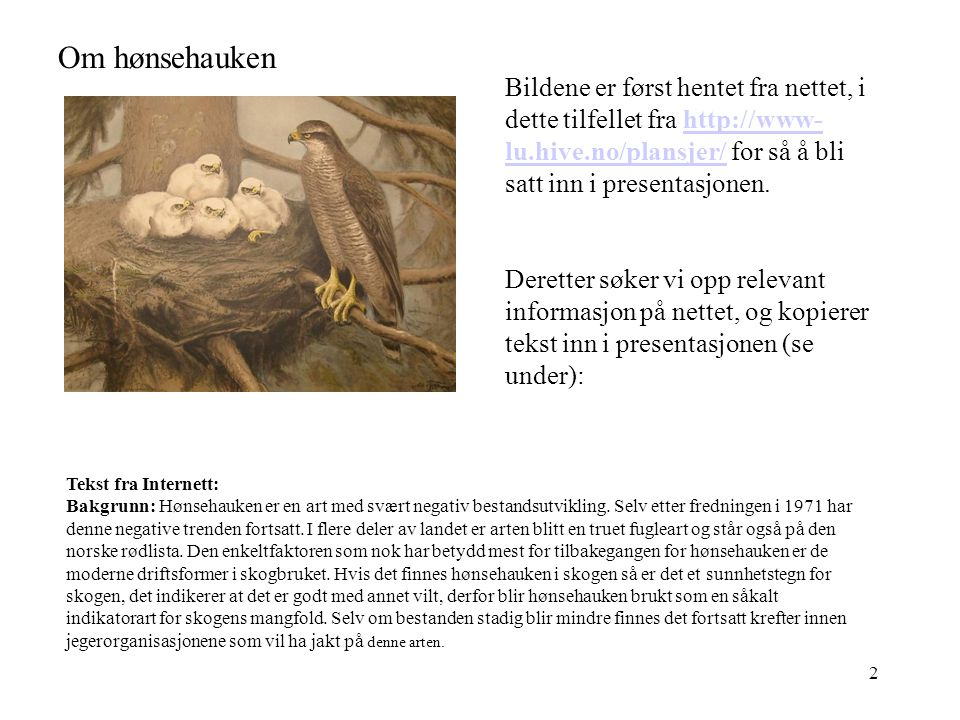 2 Om hønsehauken Tekst fra Internett: Bakgrunn: Hønsehauken er en art med svært negativ bestandsutvikling.