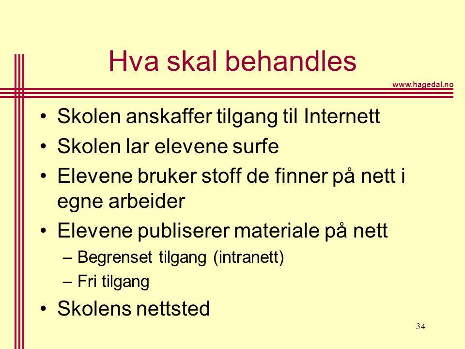 www.hagedal.no 34 Hva skal behandles •Skolen anskaffer tilgang til Internett •Skolen lar elevene surfe •Elevene bruker stoff de finner på nett i egne