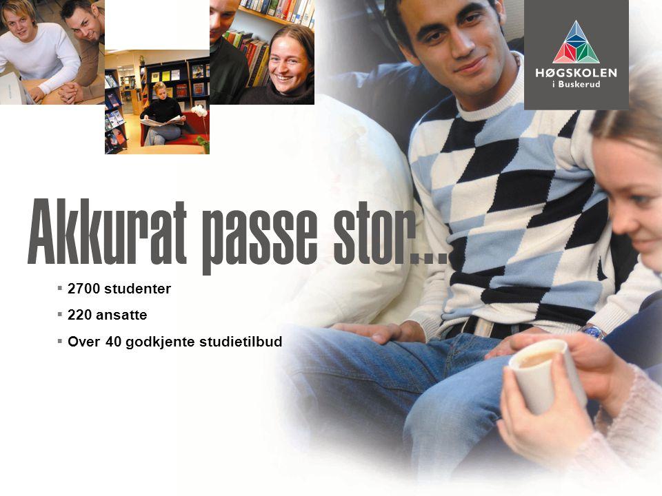 Visste du at:  Mer enn 800 studenter studerer helsefag, visuell kommunikasjon og utdanner seg til lærere i Drammen.