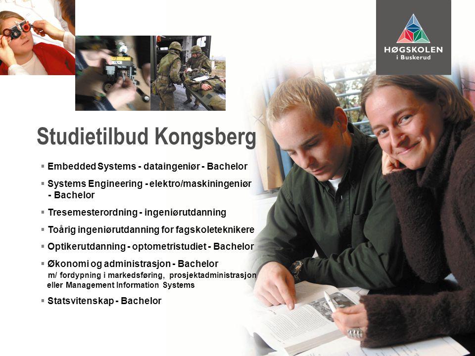  Embedded Systems - dataingeniør - Bachelor  Systems Engineering - elektro/maskiningeniør - Bachelor  Tresemesterordning - ingeniørutdanning  Toårig ingeniørutdanning for fagskoleteknikere  Optikerutdanning - optometristudiet - Bachelor  Økonomi og administrasjon - Bachelor m/ fordypning i markedsføring, prosjektadministrasjon eller Management Information Systems  Statsvitenskap - Bachelor Studietilbud Kongsberg