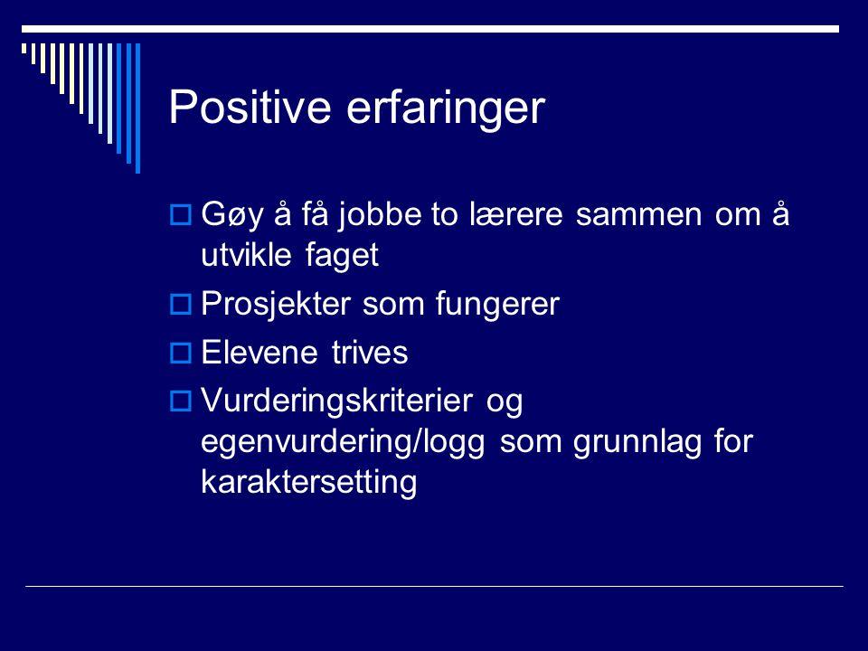 Positive erfaringer  Gøy å få jobbe to lærere sammen om å utvikle faget  Prosjekter som fungerer  Elevene trives  Vurderingskriterier og egenvurde