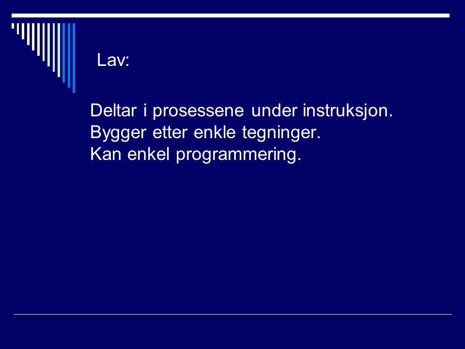 Lav: Deltar i prosessene under instruksjon. Bygger etter enkle tegninger. Kan enkel programmering.