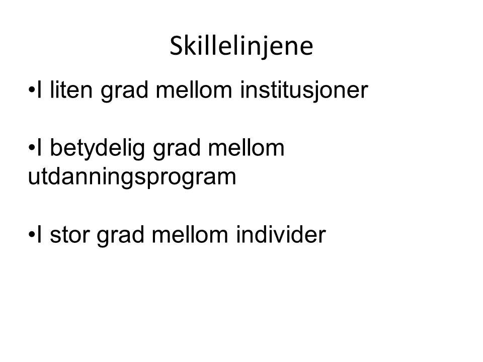 Skillelinjene •I liten grad mellom institusjoner •I betydelig grad mellom utdanningsprogram •I stor grad mellom individer