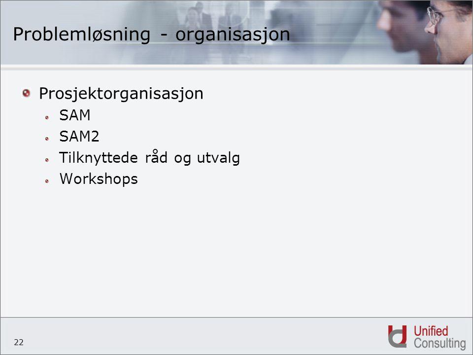 22 Problemløsning - organisasjon Prosjektorganisasjon SAM SAM2 Tilknyttede råd og utvalg Workshops