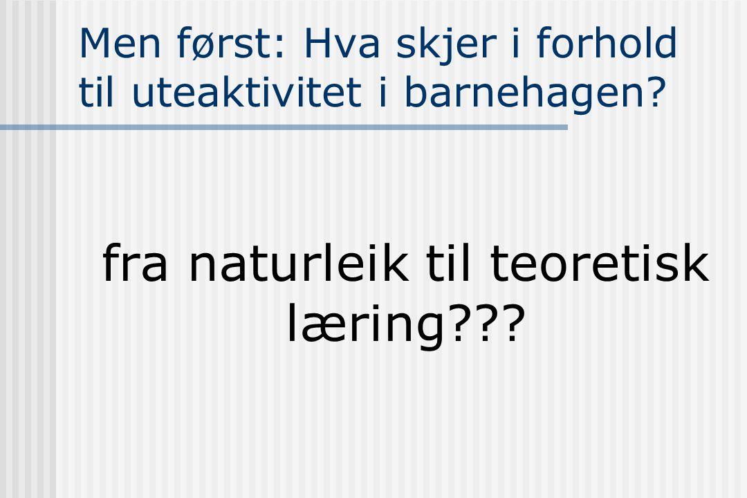 Ref:  Bagøien,T.E (red) (1999) Barn i friluft- om verdifullt friluftsliv .