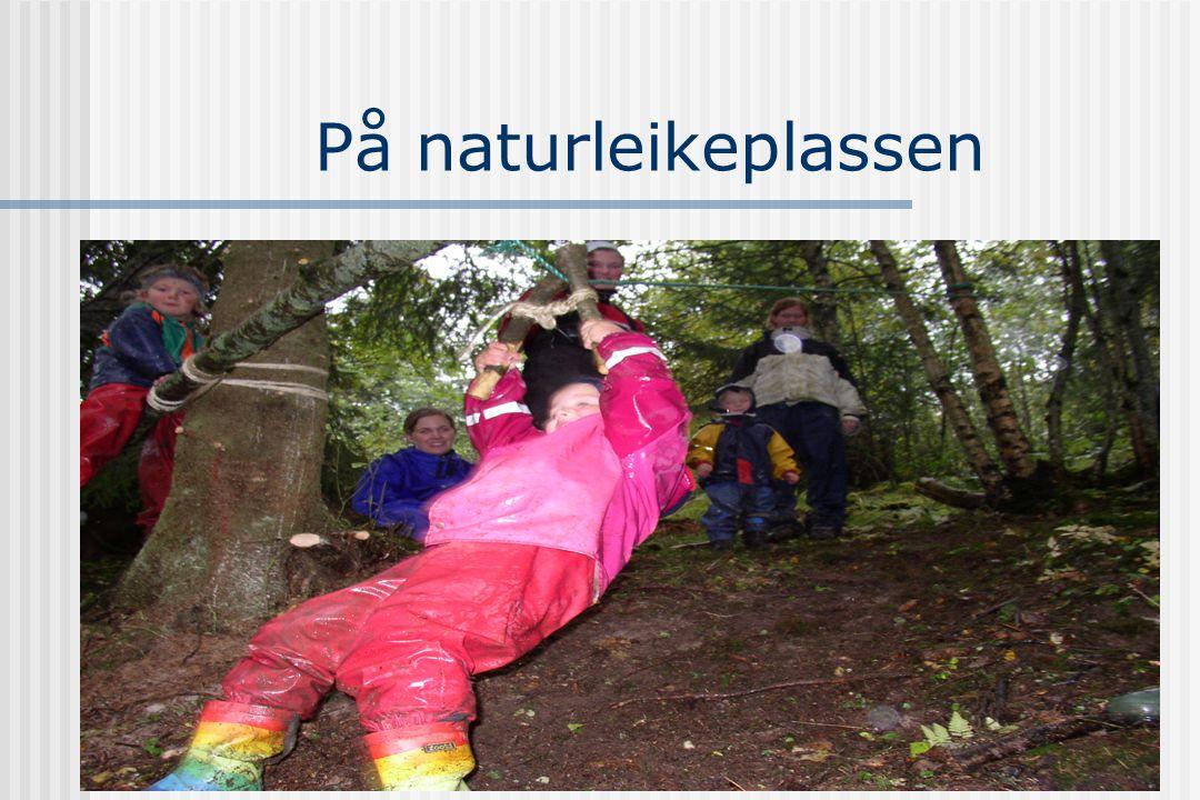 Barns leik og naturopplevelser  Besjeling  Gestaltopplevelser  Kompleksitet  Naturrettet oppmerksomhet  Barnestyrt  Mikrokosmos  Mål-løs