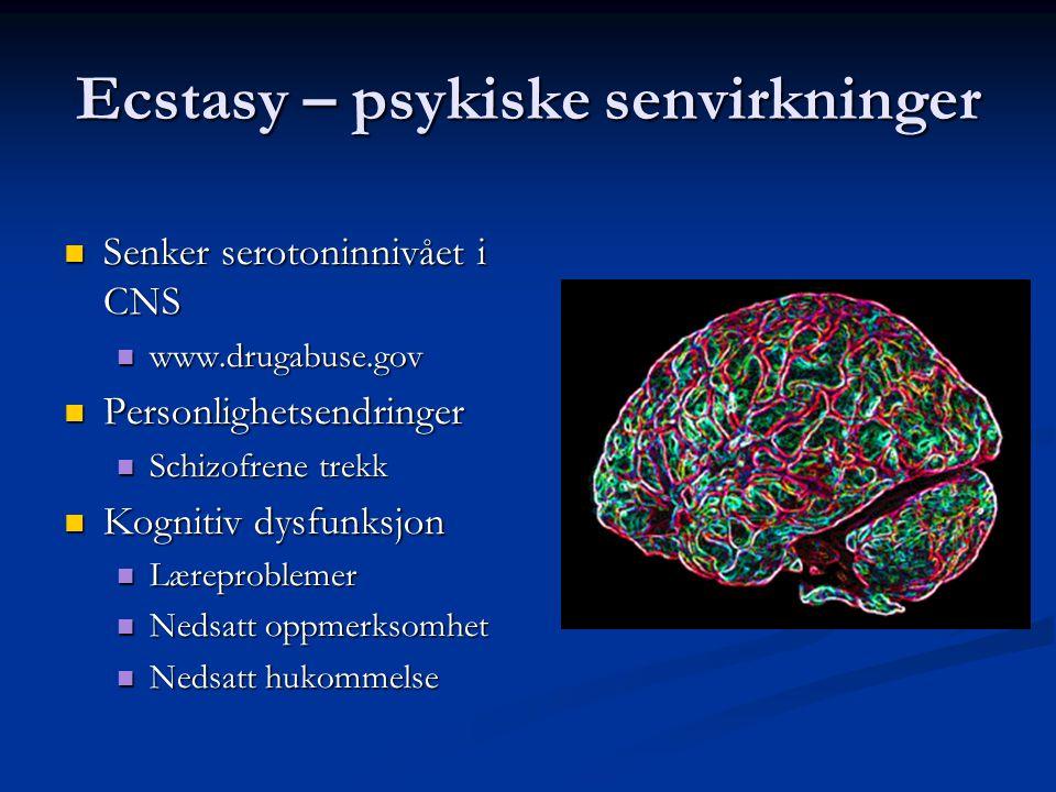 Ecstasy – psykiske senvirkninger  Senker serotoninnivået i CNS  www.drugabuse.gov  Personlighetsendringer  Schizofrene trekk  Kognitiv dysfunksjo