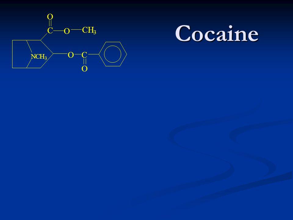 Cocaine Cocaine C O O NCH 3 C O O CH 3
