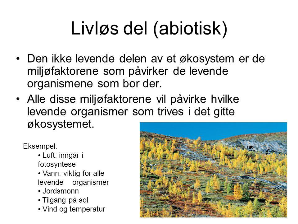 Livløs del (abiotisk) •Den ikke levende delen av et økosystem er de miljøfaktorene som påvirker de levende organismene som bor der. •Alle disse miljøf