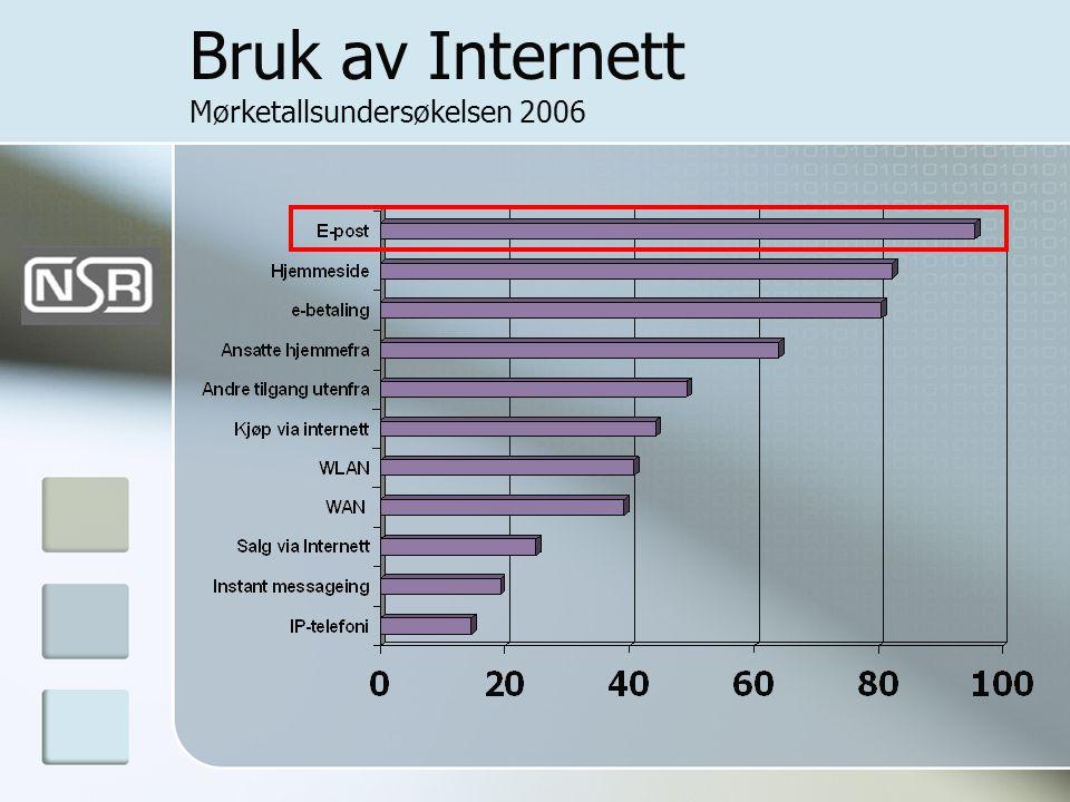 Bruk av Internett Mørketallsundersøkelsen 2006