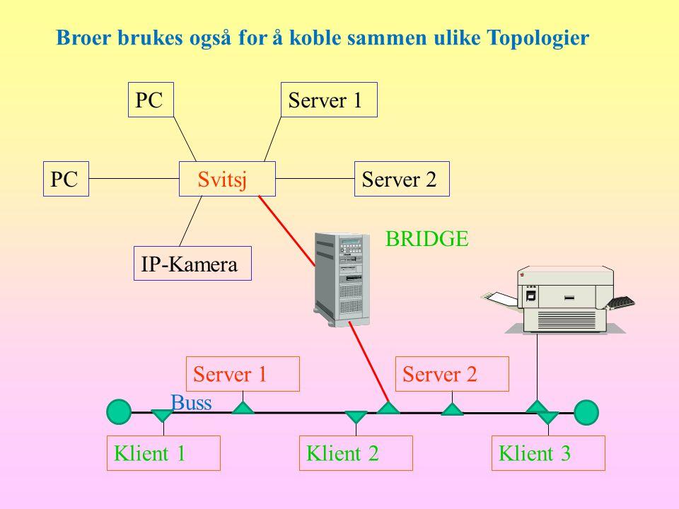 Server 1Server 2 Klient 1Klient 3Klient 2 Buss Svitsj IP-Kamera Server 2PC Server 1 BRIDGE Broer brukes også for å koble sammen ulike Topologier