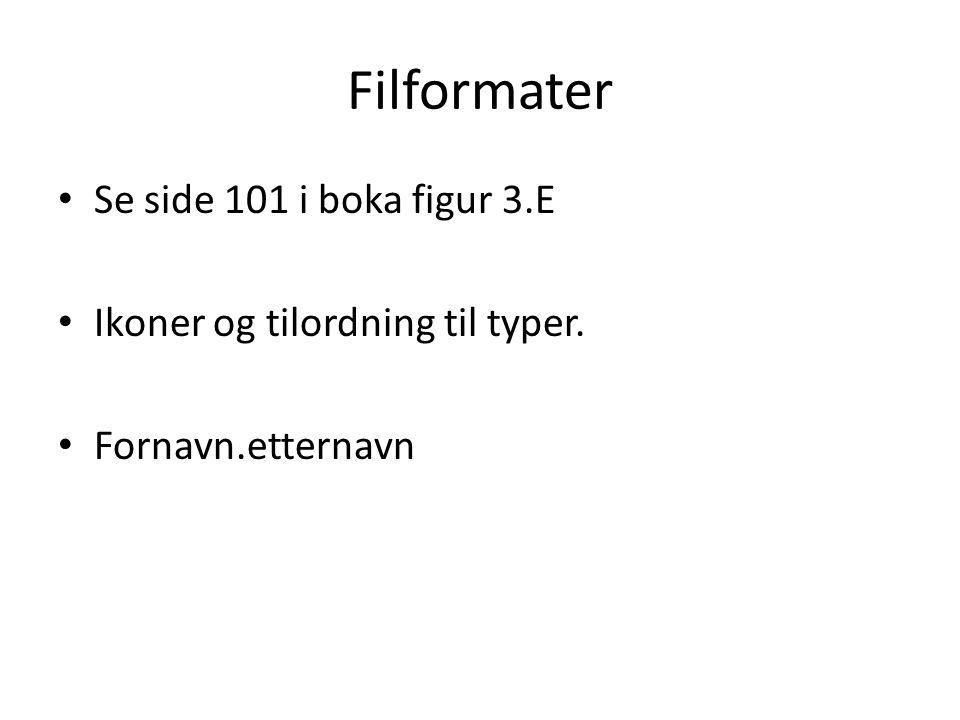 Filformater • Se side 101 i boka figur 3.E • Ikoner og tilordning til typer. • Fornavn.etternavn