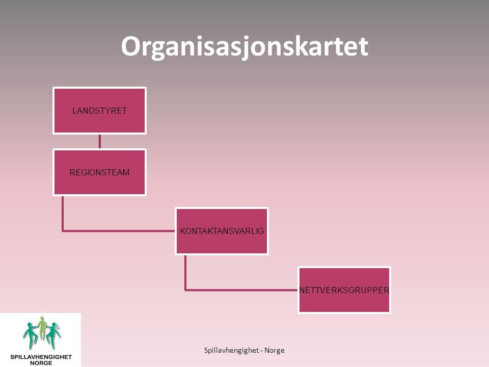 Hjelpetilbud • Kontakttelefonene • Nettverksgrupper for berørte • Kontakt gjennom E-post • Sider på sosiale medier • Individuelle møter med familien • Chatte muligheter Spillavhengighet - Norge