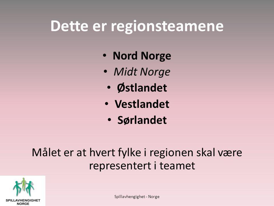 Ungdomsteamet • Etablert høsten 2011.• Årlig samling i Lyngen i Troms.
