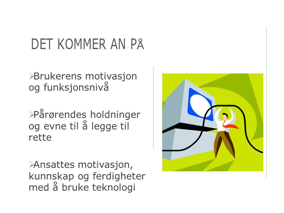 BAKGRUNN FOR ERFARINGENE  TED - Teknologi, etikk og demens (EU-prosjekt)  ASTRID – En sosial og teknologisk tilnærming til bruk av teknologi i demensomsorgen (EU-prosjekt)  ENABLE – Enabling technology for people with dementia and their carers (EU-prosjekt)  MPOWER – A middleware platform for eMPOWERing cognitively disabled and elderly (EU- prosjekt)  Teknologi og demens i Norden (NUH-prosjekt)  Yngre personer med demens – Delprosjekt 3 om kognitive hjelpemidler (Helsedirektoratet)