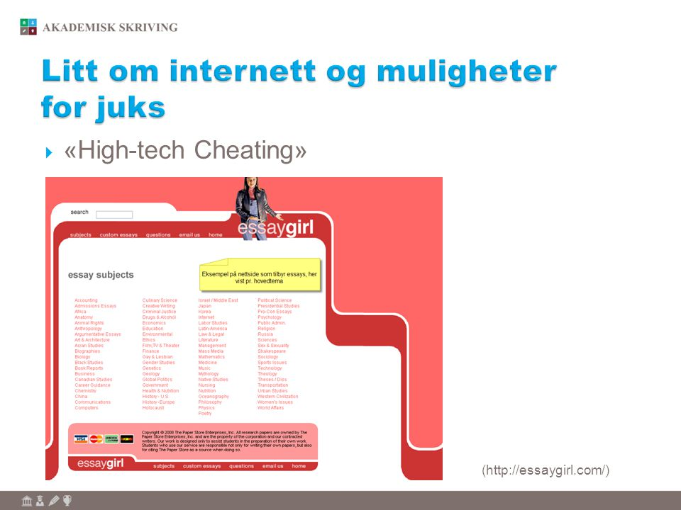  «High-tech Cheating» (http://essaygirl.com/)