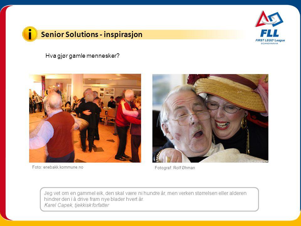 Senior Solutions - inspirasjon Jeg vet om en gammel eik, den skal være ni hundre år, men verken størrelsen eller alderen hindrer den i å drive fram ny