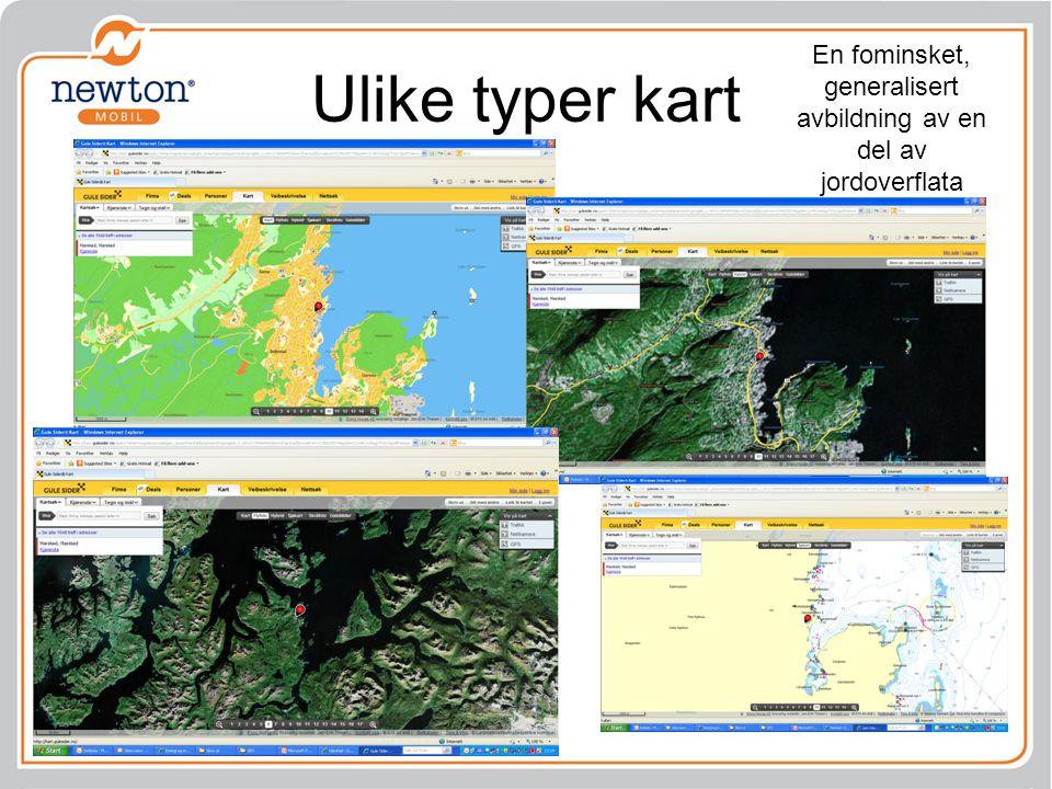 Ulike typer kart PPP 1 En fominsket, generalisert avbildning av en del av jordoverflata