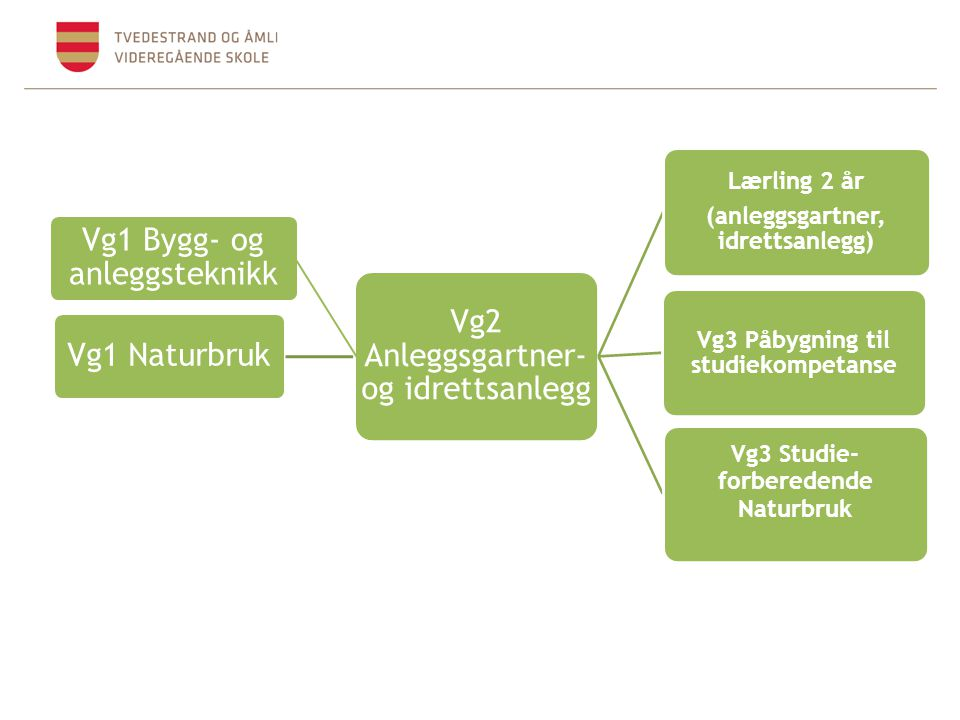 Vg1 Bygg- og anleggsteknikk Vg1 Naturbruk Vg2 Anleggsgartner- og idrettsanlegg Lærling 2 år (anleggsgartner, idrettsanlegg) Vg3 Påbygning til studieko