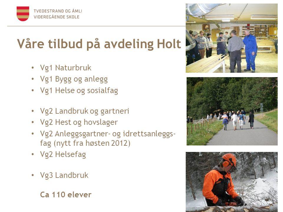 Våre tilbud på avdeling Holt • Vg1 Naturbruk • Vg1 Bygg og anlegg • Vg1 Helse og sosialfag • Vg2 Landbruk og gartneri • Vg2 Hest og hovslager • Vg2 An