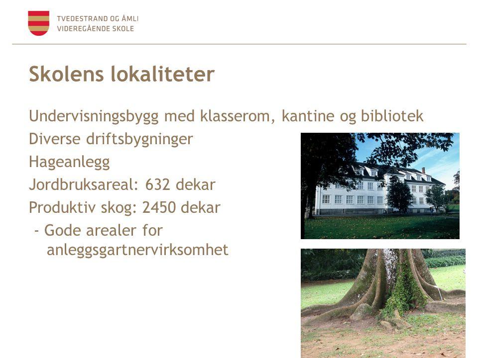 Skolens lokaliteter Undervisningsbygg med klasserom, kantine og bibliotek Diverse driftsbygninger Hageanlegg Jordbruksareal: 632 dekar Produktiv skog: 2450 dekar - Gode arealer for anleggsgartnervirksomhet