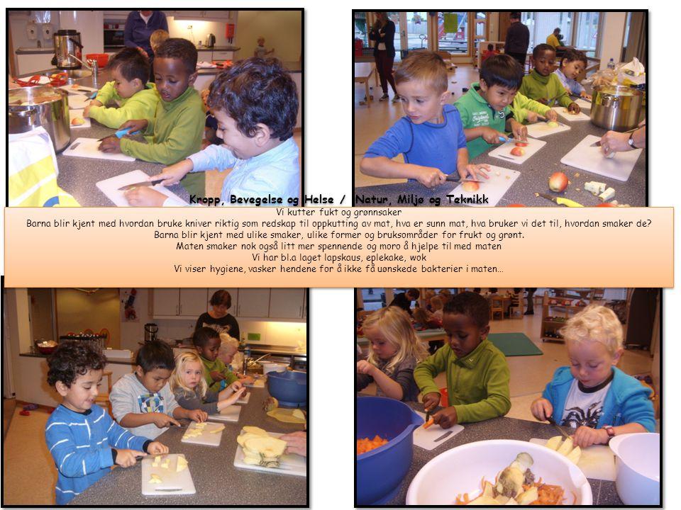 Kropp, Bevegelse og Helse / Natur, Miljø og Teknikk Vi kutter fukt og grønnsaker Barna blir kjent med hvordan bruke kniver riktig som redskap til oppkutting av mat, hva er sunn mat, hva bruker vi det til, hvordan smaker de.