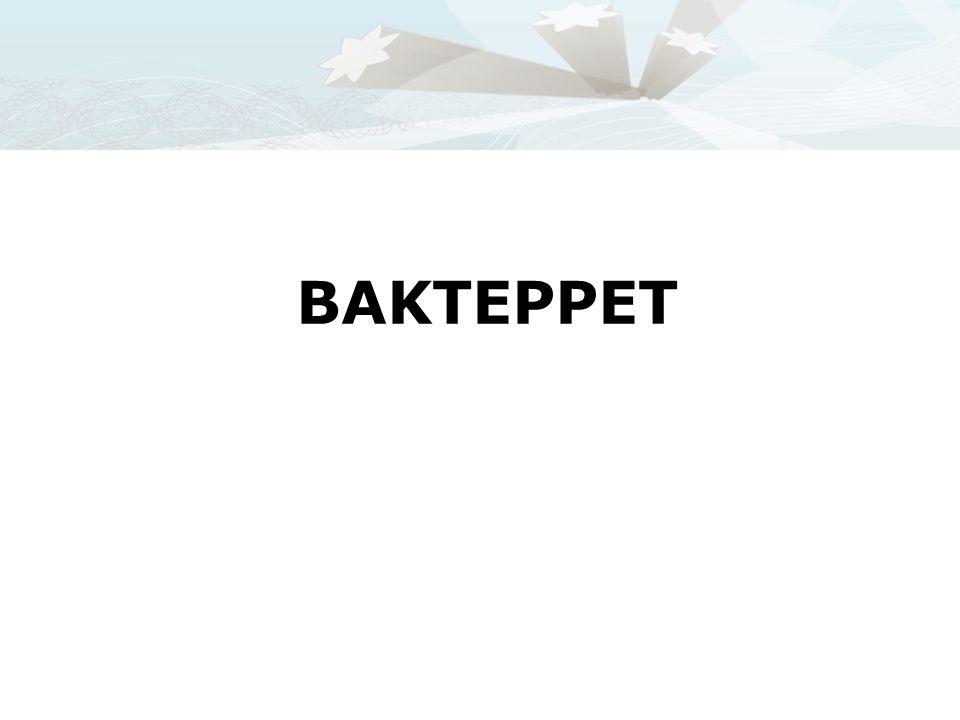 BAKTEPPET