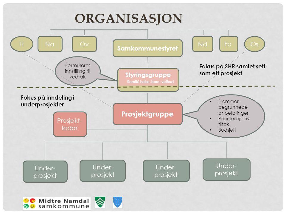 ORGANISASJON Samkommunestyret Prosjektgruppe Under- prosjekt NaOvNd Fo Formulerer innstilling til vedtak • Fremmer begrunnede anbefalinger • Prioriter