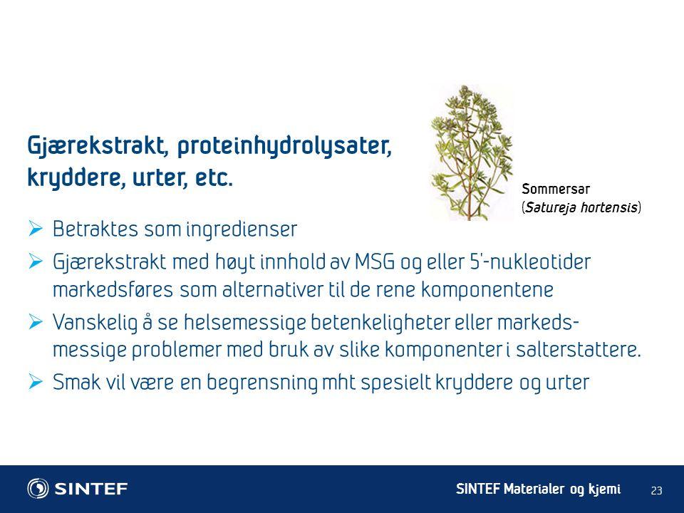 SINTEF Materialer og kjemi  Betraktes som ingredienser  Gjærekstrakt med høyt innhold av MSG og eller 5'-nukleotider markedsføres som alternativer t