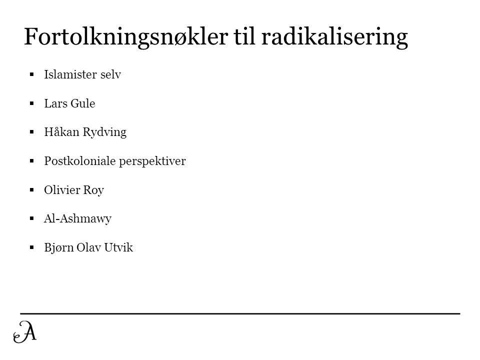 Fortolkningsnøkler til radikalisering  Islamister selv  Lars Gule  Håkan Rydving  Postkoloniale perspektiver  Olivier Roy  Al-Ashmawy  Bjørn Ol
