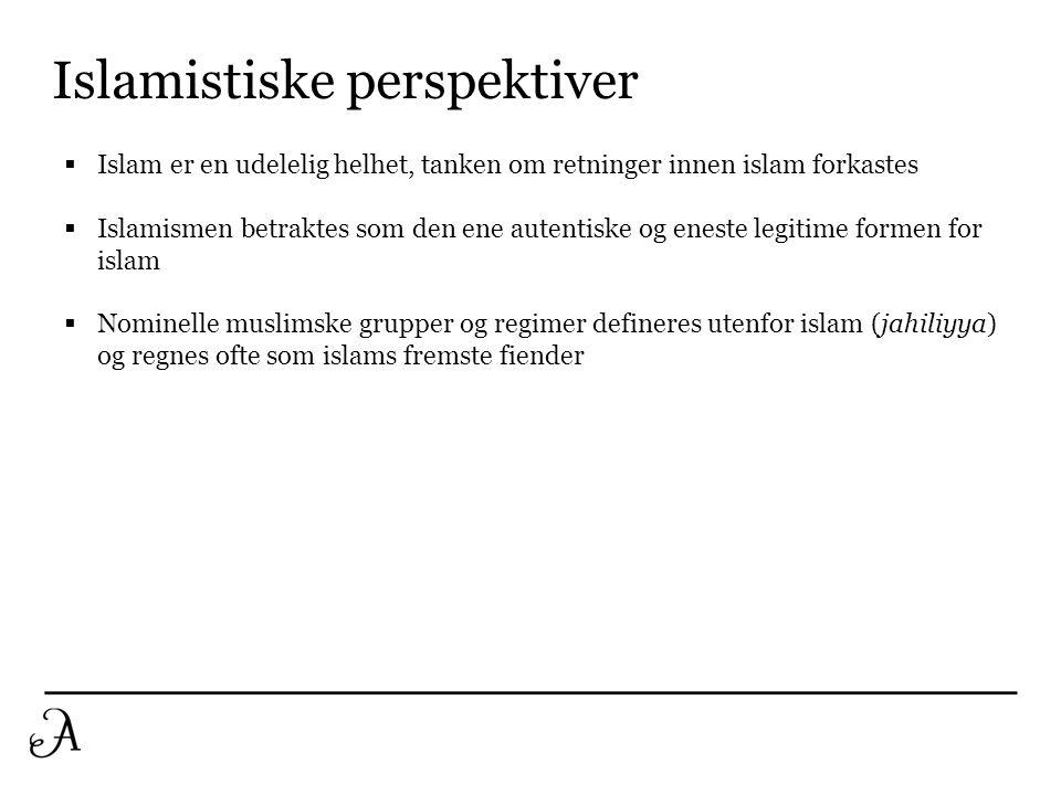 Islamistiske perspektiver  Islam er en udelelig helhet, tanken om retninger innen islam forkastes  Islamismen betraktes som den ene autentiske og en