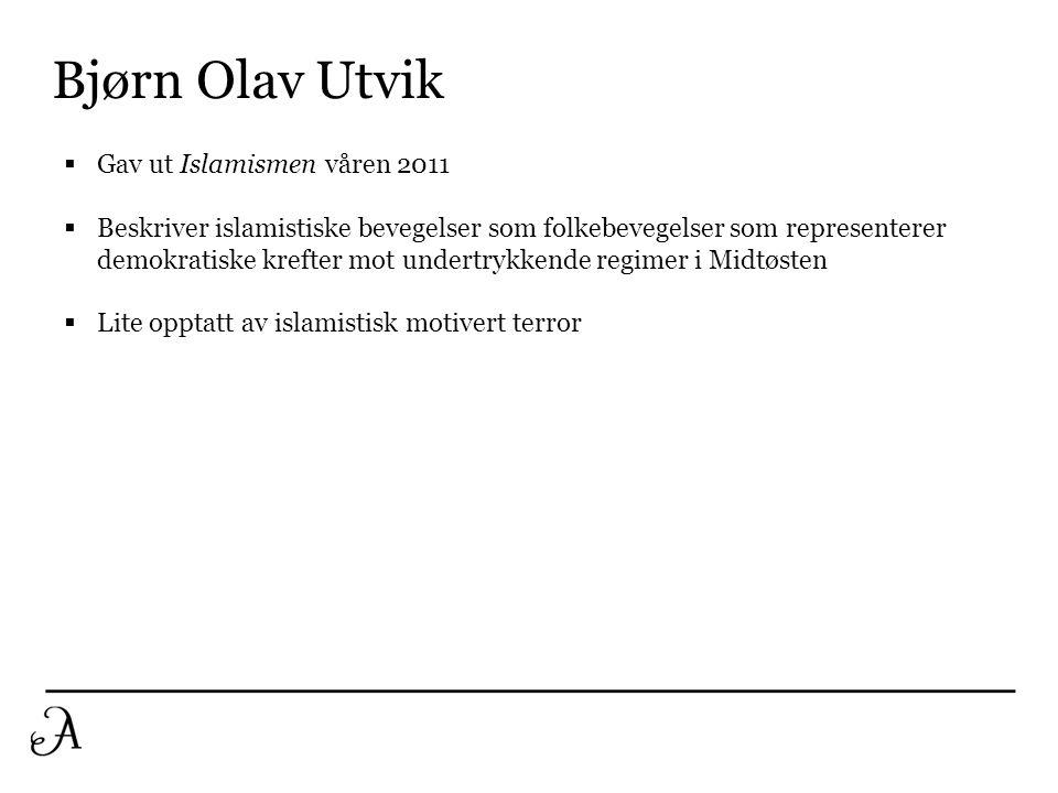 Bjørn Olav Utvik  Gav ut Islamismen våren 2011  Beskriver islamistiske bevegelser som folkebevegelser som representerer demokratiske krefter mot und
