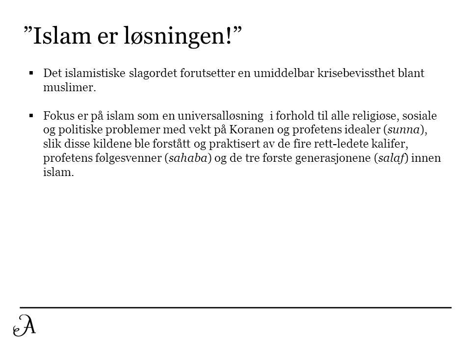 """""""Islam er løsningen!""""  Det islamistiske slagordet forutsetter en umiddelbar krisebevissthet blant muslimer.  Fokus er på islam som en universalløsni"""