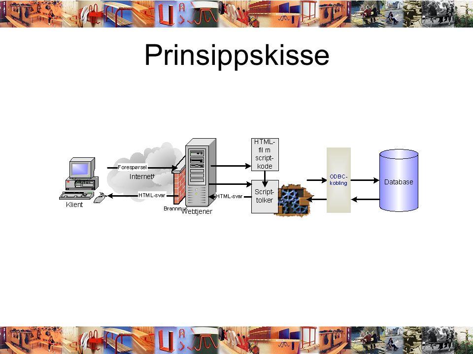 Prinsippskisse