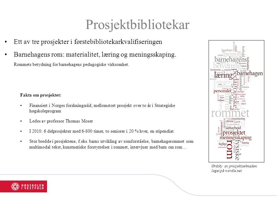Prosjektbibliotekar •Ett av tre prosjekter i førstebibliotekarkvalifiseringen •Barnehagens rom: materialitet, læring og meningsskaping. Rommets betydn