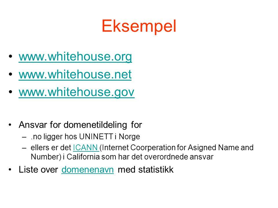 Eksempel •www.whitehouse.orgwww.whitehouse.org •www.whitehouse.netwww.whitehouse.net •www.whitehouse.govwww.whitehouse.gov •Ansvar for domenetildeling