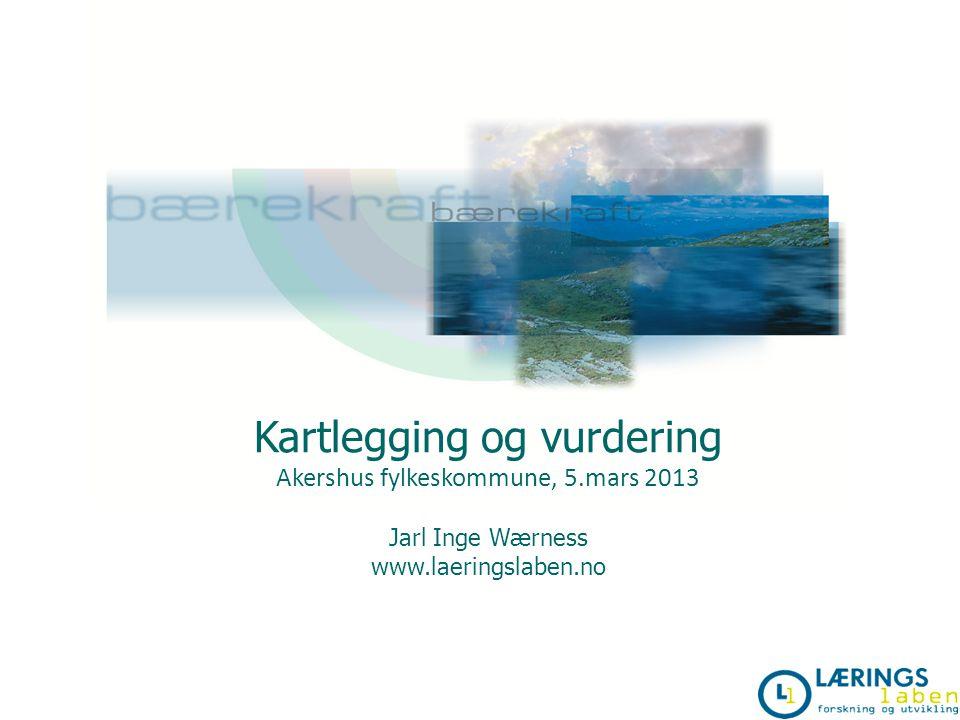 Kartlegging og vurdering Akershus fylkeskommune, 5.mars 2013 Jarl Inge Wærness www.laeringslaben.no