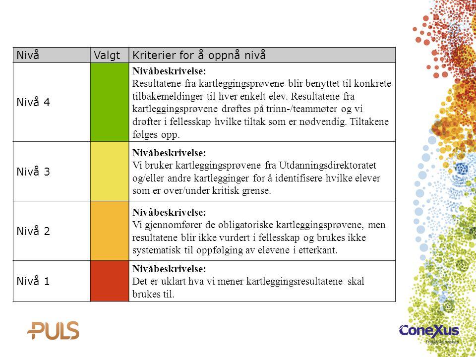NivåValgtKriterier for å oppnå nivå Nivå 4 Nivåbeskrivelse: Resultatene fra kartleggingsprøvene blir benyttet til konkrete tilbakemeldinger til hver e