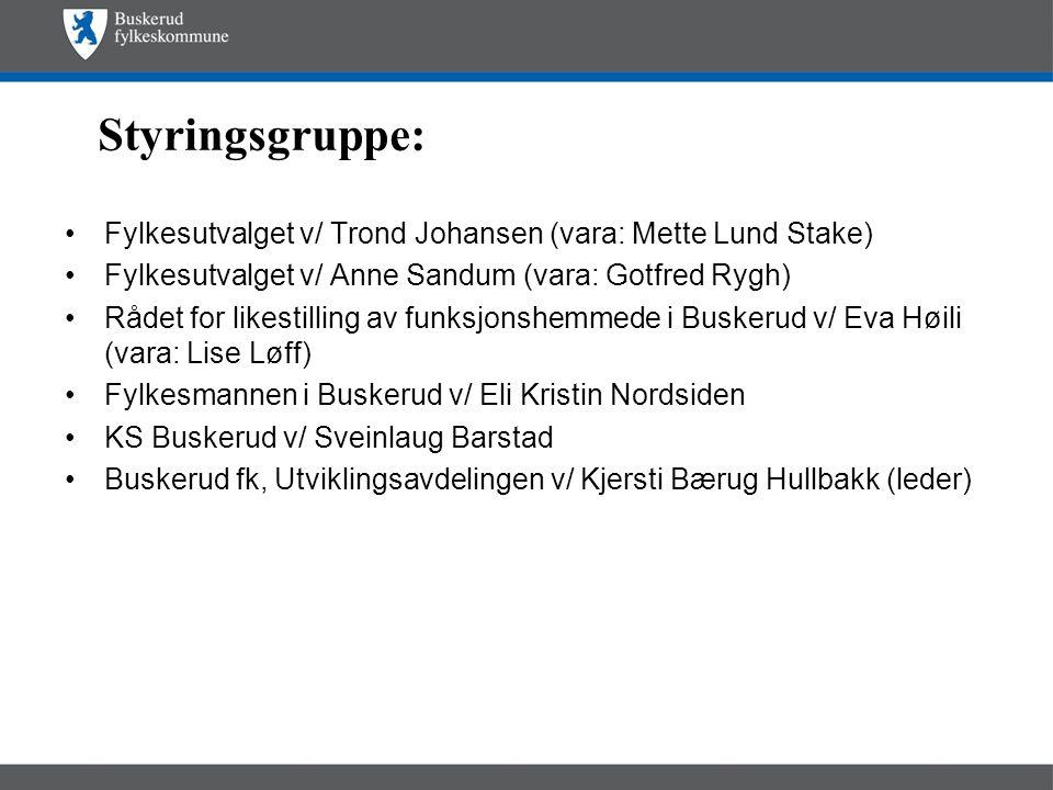 Styringsgruppe: •Fylkesutvalget v/ Trond Johansen (vara: Mette Lund Stake) •Fylkesutvalget v/ Anne Sandum (vara: Gotfred Rygh) •Rådet for likestilling