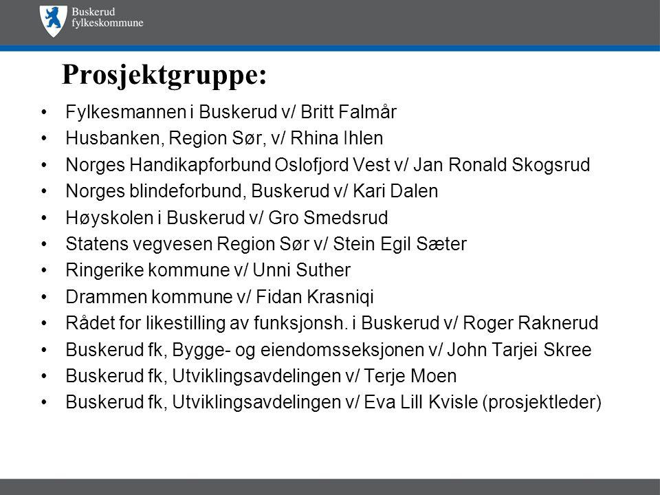 Prosjektgruppe: •Fylkesmannen i Buskerud v/ Britt Falmår •Husbanken, Region Sør, v/ Rhina Ihlen •Norges Handikapforbund Oslofjord Vest v/ Jan Ronald S