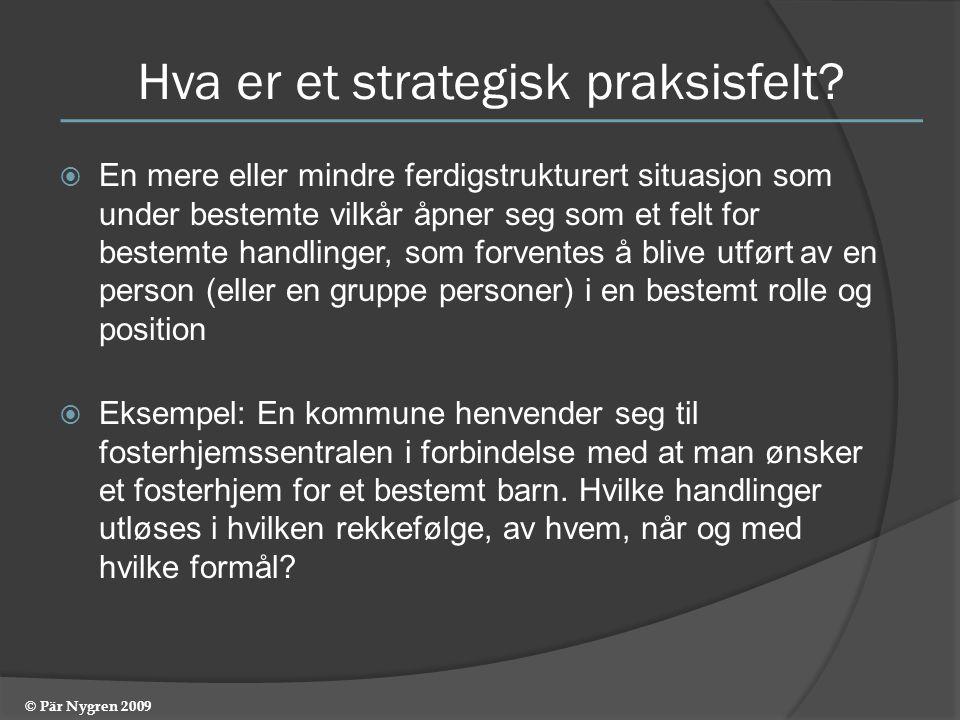 Hva er et strategisk praksisfelt.