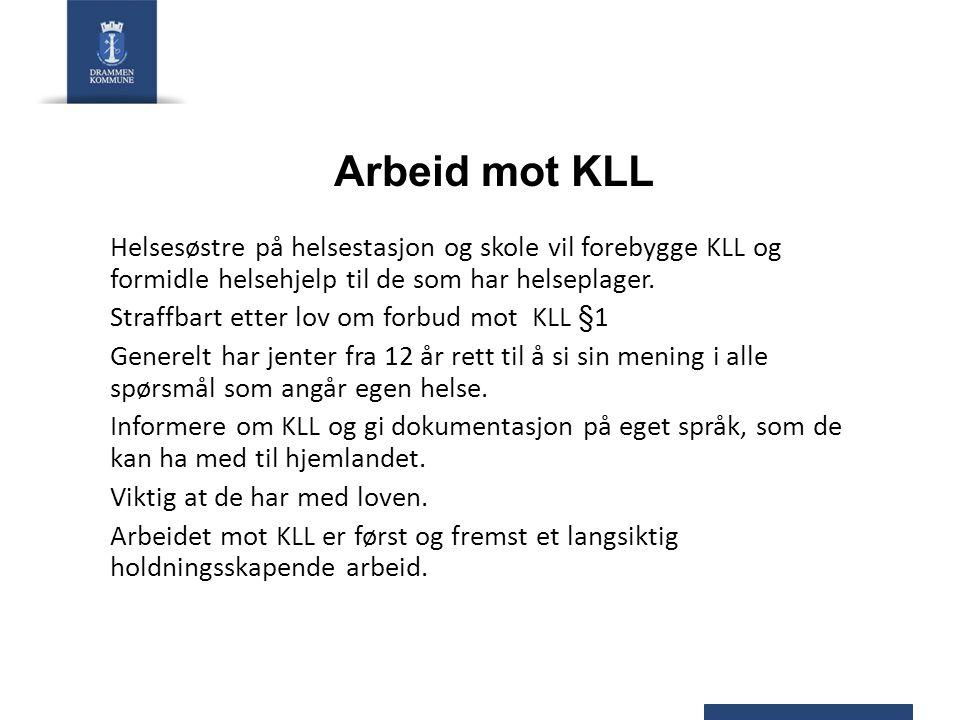 Arbeid mot KLL HANDLINGSPLAN MOT KJØNNSLEMLESTELSE 2008 – 2012 TILTAK: Punkt 22.