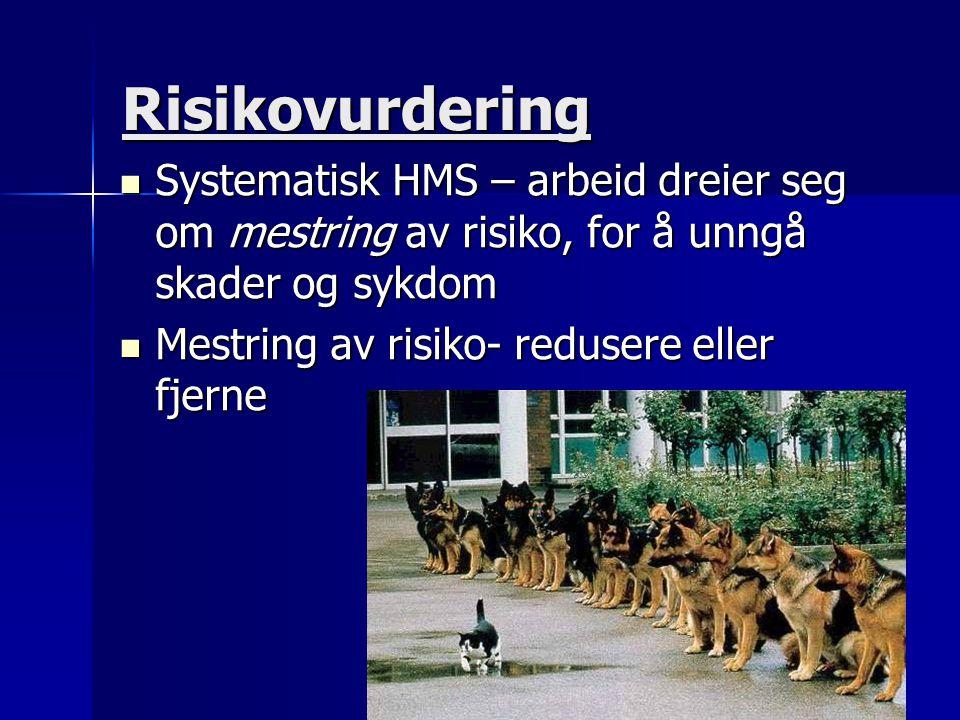 Risikovurdering  Systematisk HMS – arbeid dreier seg om mestring av risiko, for å unngå skader og sykdom  Mestring av risiko- redusere eller fjerne