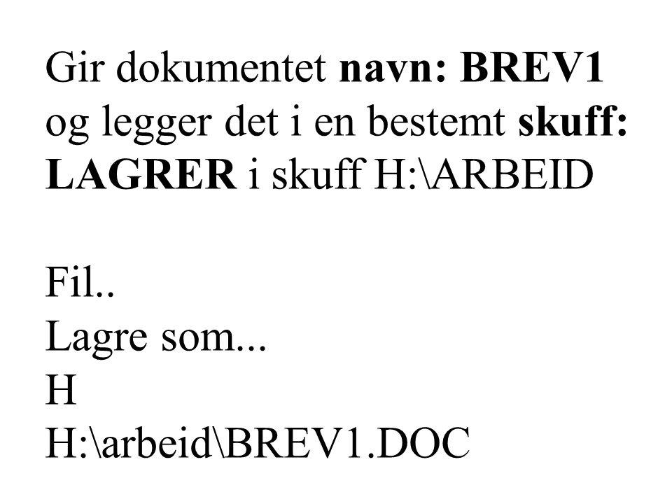 Gir dokumentet navn: BREV1 og legger det i en bestemt skuff: LAGRER i skuff H:\ARBEID Fil..