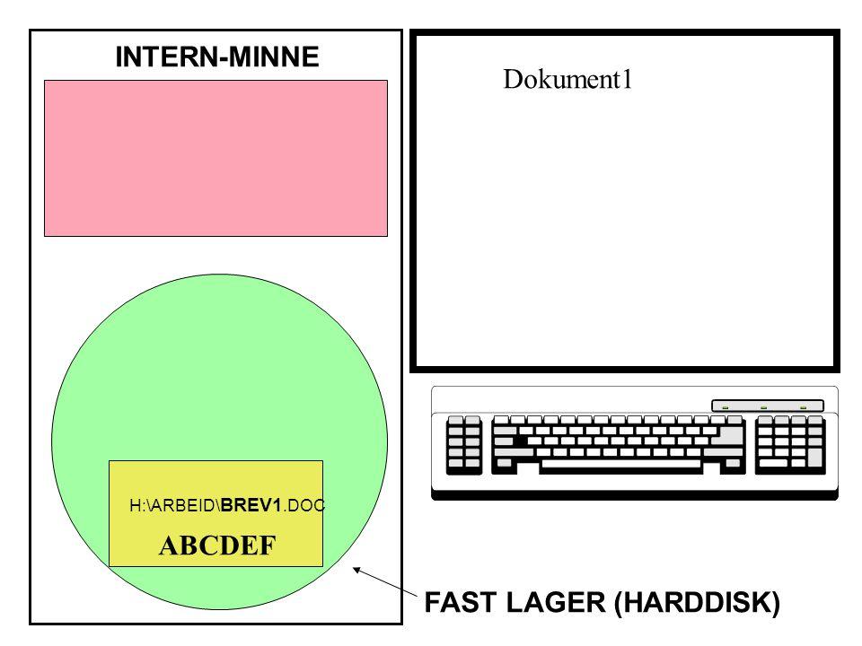 ABCDEF INTERN-MINNE FAST LAGER (HARDDISK) H:\ARBEID\ BREV1.DOC Dokument1