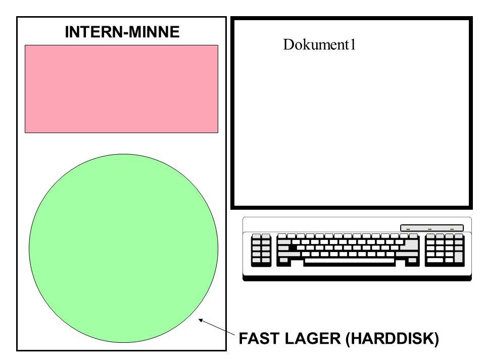 INTERN-MINNE FAST LAGER (HARDDISK) Dokument1